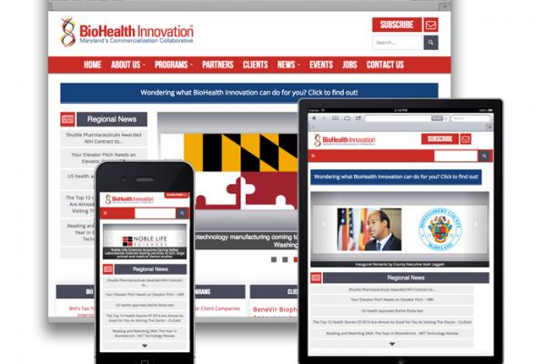 BHI Website Examples.